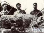 揭秘韩国首支赴朝特工队 252名精锐蒙冤37年